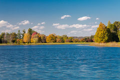 Autumn landscape. With lake and forest royalty free stock image