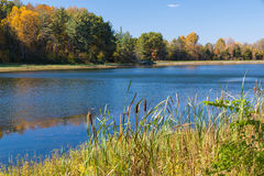 Autumn landscape. With lake and forest stock photography