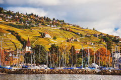 Autumn landscape of Lake Geneva Stock Images