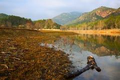 Autumn landscape with lake. Muga Royalty Free Stock Image