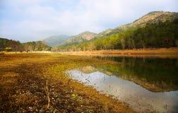 Autumn landscape with lake. Muga,  Catalonia Royalty Free Stock Photos