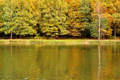 Autumn landscape on lake. Park in the fall. Golden autumn. Royalty Free Stock Photo