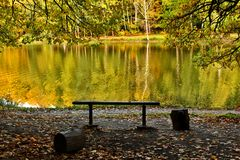 Autumn landscape on lake. Park in the fall. Golden autumn. Royalty Free Stock Image