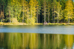 Autumn landscape on the lake in woods Stock Images
