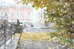 Autumn landscape. The leaves fly from the trees in the city. Aut Royalty Free Stock Photo