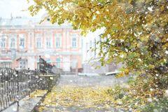 Autumn landscape. The leaves fly from the trees in the city. Aut Royalty Free Stock Photography