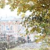 Autumn landscape. The leaves fly from the trees in the city. Aut Royalty Free Stock Image