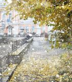 Autumn landscape. The leaves fly from the trees in the city. Aut Stock Photography