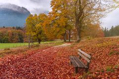 Autumn landscape with lonely bench Royalty Free Stock Photos