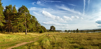 Autumn landscape with lush pine tree on the banks of the river and country road Stock Photography