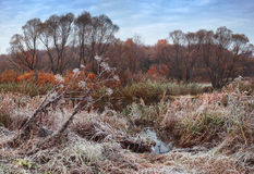 Autumn landscape in meadow with river Royalty Free Stock Photos