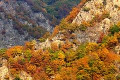 Autumn landscape in Mehedinti Mountains Stock Photo