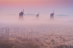 Autumn landscape misty morning on the wooden windmills in the pa Stock Photos