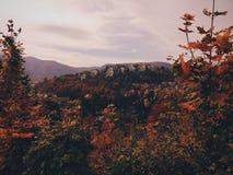 Autumn Landscape mit Blättern Stockfotos