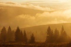 Autumn Landscape mit Nebel und Sonne Lizenzfreie Stockfotos