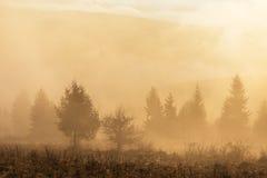 Autumn Landscape mit Nebel und Sonne Stockfotos