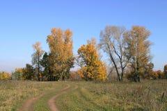 Autumn landscape Royalty Free Stock Photo