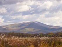 Autumn landscape with mountain and the cloudy sky Royalty Free Stock Image