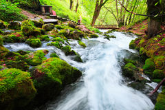 Autumn landscape with mountain river flowing among mossy stones through the colorful forest. Beautiful cascade small waterfalls. Royalty Free Stock Photos