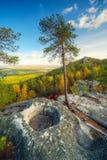 Autumn landscape with mountains Stock Photos
