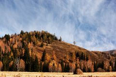 Autumn landscape in mountains Stock Photo
