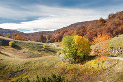 Autumn landscape in mountains Royalty Free Stock Image