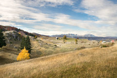 Autumn landscape in mountains Royalty Free Stock Photo