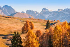 Autumn Landscape with Mountains Royalty Free Stock Photo