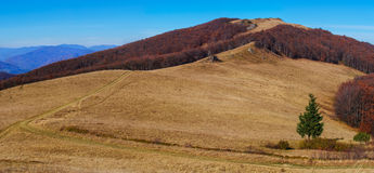 Autumn landscape in the mountains. Royalty Free Stock Image