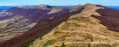Autumn landscape in the mountains. Stock Photography