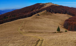Autumn landscape in the mountains. Stock Image