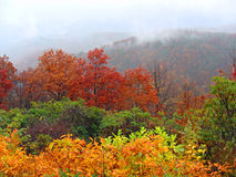 Autumn landscape in the mountains. Bright colors of autumn on the Smoky mountains Royalty Free Stock Photography