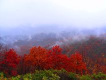 Autumn landscape in the mountains Royalty Free Stock Images
