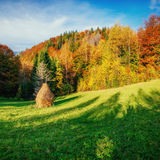 Autumn landscape in the mountains with colorful forest haycock t Stock Photography