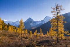 Autumn landscape with mountains, Royalty Free Stock Images