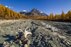 Autumn landscape with mountains, Royalty Free Stock Photos