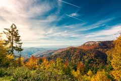 Autumn landscape in mountains of Romania. Gorgeous autumn landscape in mountains of Romania. cliff above the forest in fall color. beautiful view in evening stock photo