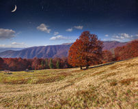 Autumn landscape in the mountains with stars and moon in the sky Stock Photography