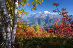 Autumn landscape in the mountains Stock Images