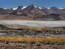 Autumn landscape in the mountains: to the fore tall yellow sloping grass, white stripes of salty land, behind the high mountain pe Stock Images