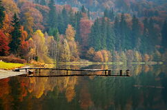Autumn landscape in the mountains Royalty Free Stock Photo