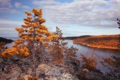 Autumn landscape in the mountains Stock Photos