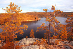 Autumn landscape in the mountains Stock Image