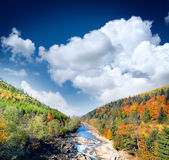 Autumn landscape with the mountian river Stock Image