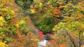 Autumn landscape at Naruko Gorge