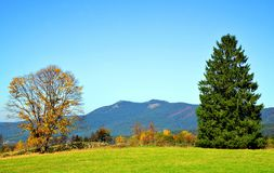 Autumn landscape in National park Bavarian forest, Germany. Royalty Free Stock Photography