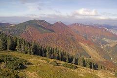 Autumn landscape in a national park Mala Fatra, Slovakia Royalty Free Stock Image