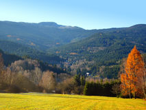 Autumn landscape in the national park Sumava - Czech Republic Royalty Free Stock Photo
