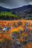 Autumn landscape near river Spey. Royalty Free Stock Photo