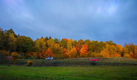 Autumn landscape near road Royalty Free Stock Photo